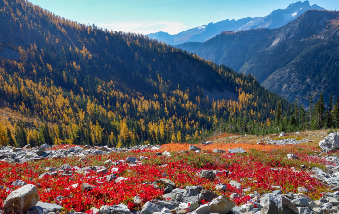 Autumn in the Cascades